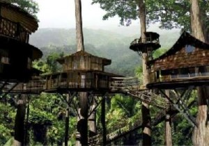 $50,000 Tree House in Costa Rica