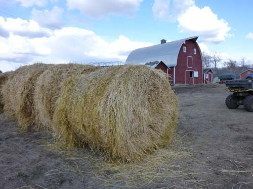 Hey! It's Hay.
