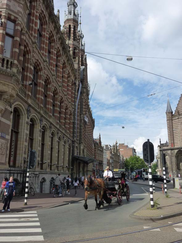 Horse Tours of Amsterdam