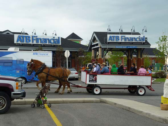 Horse rides at a Stampede Breakfast.