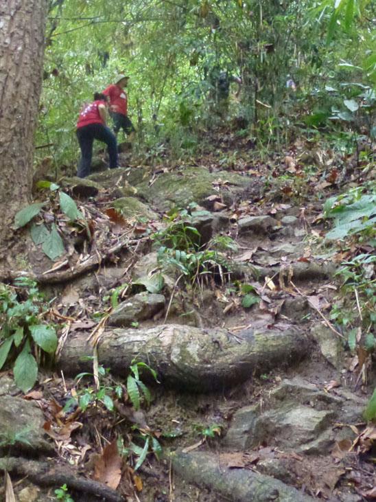 doi-suthep-steep-hike-up-06