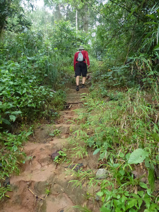trail-hike-doi-suthep