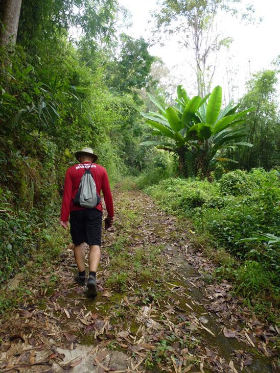 doi-suthep-hike-walk-up-the-slope