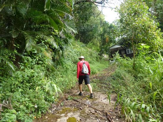 doi-suthep-hike-up-the-slope