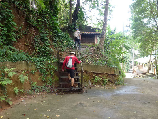 doi-suthep-hike-are-we-there-yet