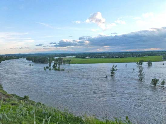 Calgary Flood - Bow River After